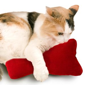 Rosie's Kick Pillow