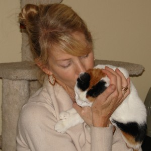 Rescuing and Fostering Cats